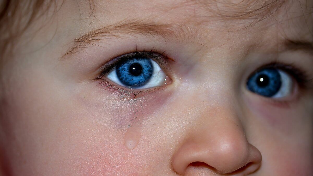 childrens-eyes-1914519_1920